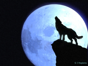 howling_at_the_moon_by_shopkins